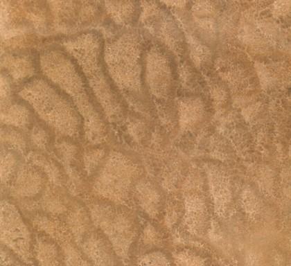 木紋黃-正切