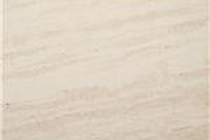 木化石大斜紋 法國木